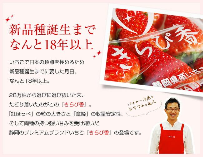 いちごで日本の頂点を極めるため新品種誕生までに要した月日、なんと18年以上。28万株から選びに選び抜いた末、たどり着いたのがこの『きらぴ香』。「紅ほっぺ」の粒の大きさと「章姫」の収量安定性、そして両種の持つ強い甘みを受け継いだ静岡のプレミアムブランドいちご『きらぴ香』の登場です。
