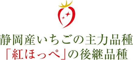 静岡産いちごの主力品種「紅ほっぺ」の後継品種