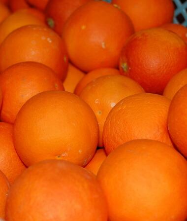 かごにはいったブラッドオレンジ