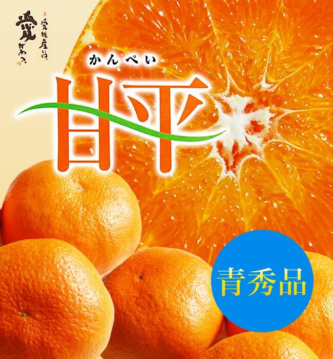 愛媛産甘平(かんぺい)5キロ【青秀】