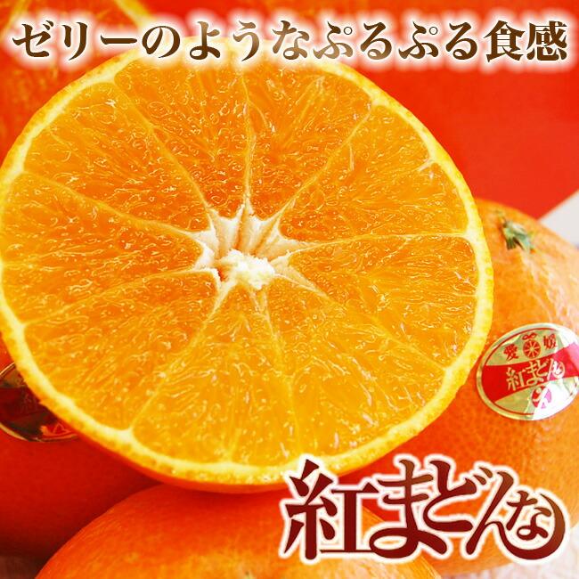 愛媛産柑橘紅まどんな