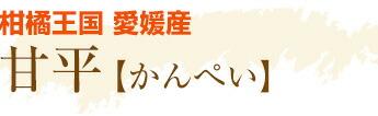 柑橘王国 愛媛産 甘平(かんぺい)