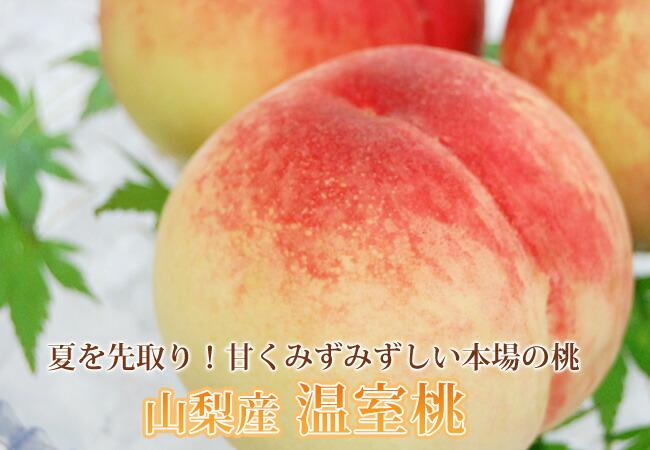 山梨産温室桃