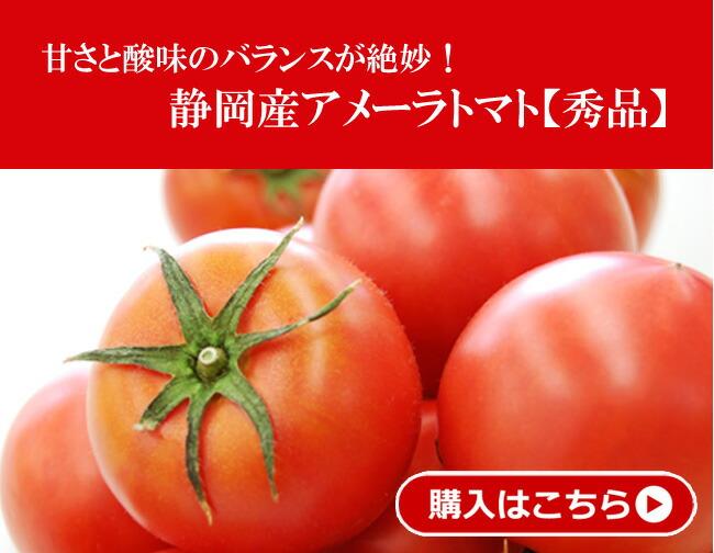 高糖度フルーツトマト 静岡産アメーラトマト