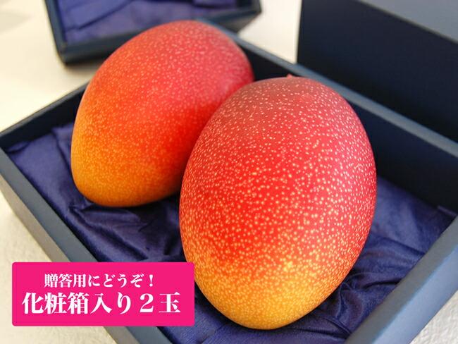 宮崎産完熟マンゴー