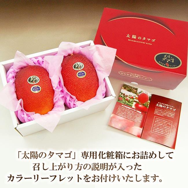 宮崎産完熟マンゴー最高峰太陽のタマゴのリーフレットをお付けいたします