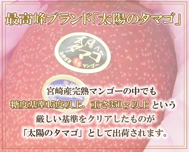 宮崎産完熟マンゴー最高峰太陽のタマゴ
