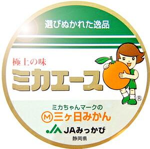 青島三ケ日みかん特選品ミカエース