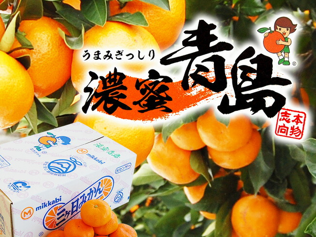 JAみっかび 濃蜜青島【赤秀】5キロ