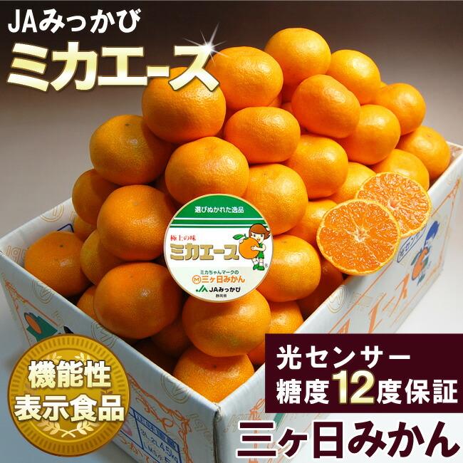 厳選高糖度三ケ日みかんミカエースMサイズ特選品3キロ【三ケ日みかん】