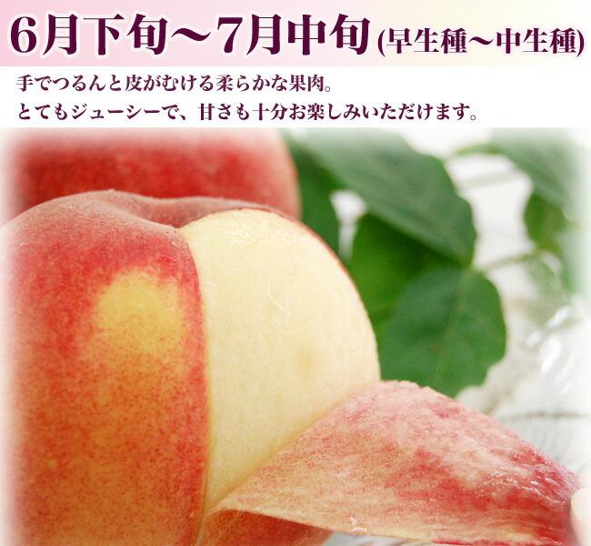 7月中旬までの早生は手で皮がむける柔らかな果肉の桃です