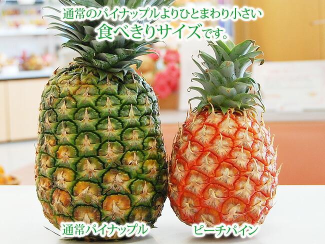 通常のパイナップルよりも一回り小さい食べきりサイズです。