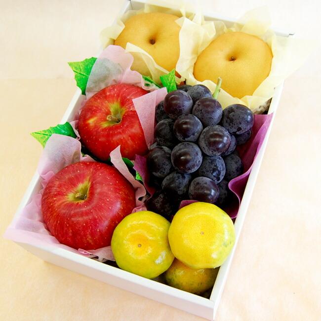 【お祝いや内祝い、秋のギフトに】りんご、梨、ぶどう、みかんの入ったラッピング果物セット