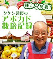 タケシ会長のアボカド日記