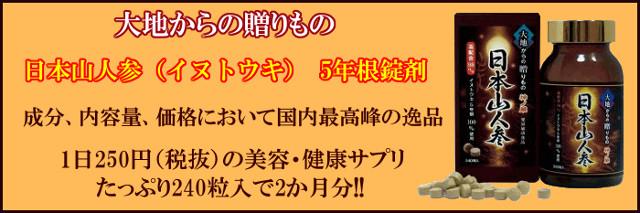 日本山人参(イヌトウキ) 5年根錠剤