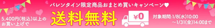 バレンタイン期間限定!1/31まで5,400円以上ご購入で送料無料!!