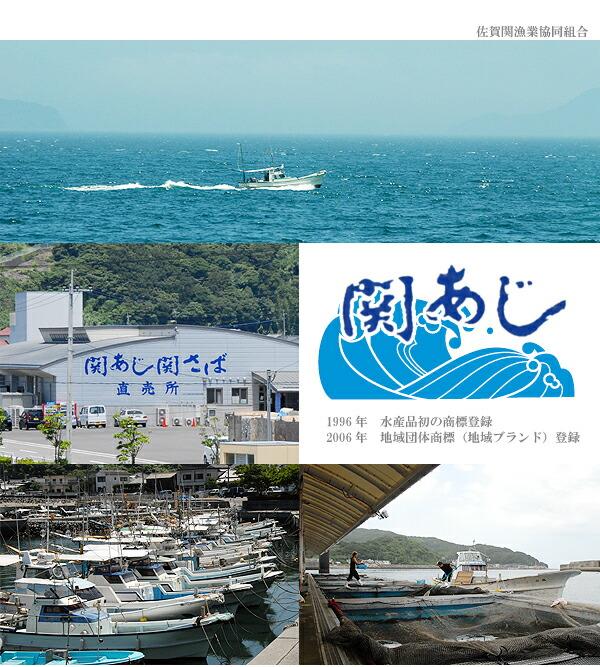 佐賀関漁協