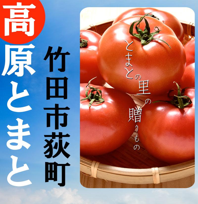 トマト,とまと,桃太郎