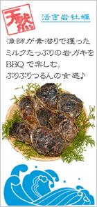 岩牡蠣,カキ