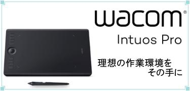 UPG_Win_Pro_32