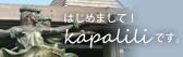 はじめましてKapaliliです