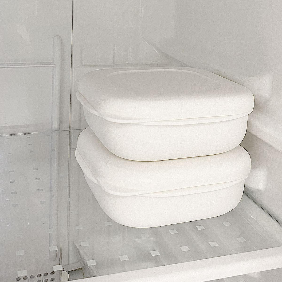 極冷凍ごはん容器2個入り K748