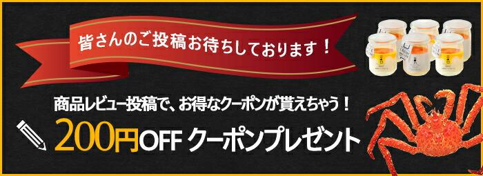 レビュー投稿で200円クーポン