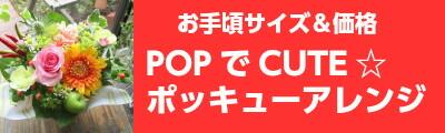 ポッキュー☆アレンジ 送料無料・メッセージカード・画像サービス付