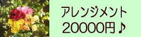ご予算20000円