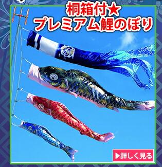 桐箱付★プレミアム鯉のぼり