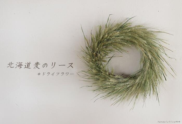 北海道麦のリース