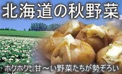 北海道の秋野菜