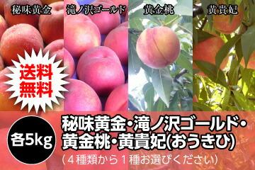 秘味黄金・滝ノ沢ゴールド・黄金桃・黄貴妃(おうきひ)