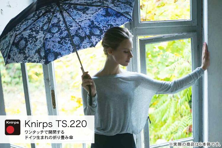 T220 クニルプス