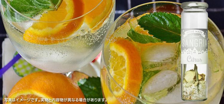 サングリア 味 シトラス&ジンジャー