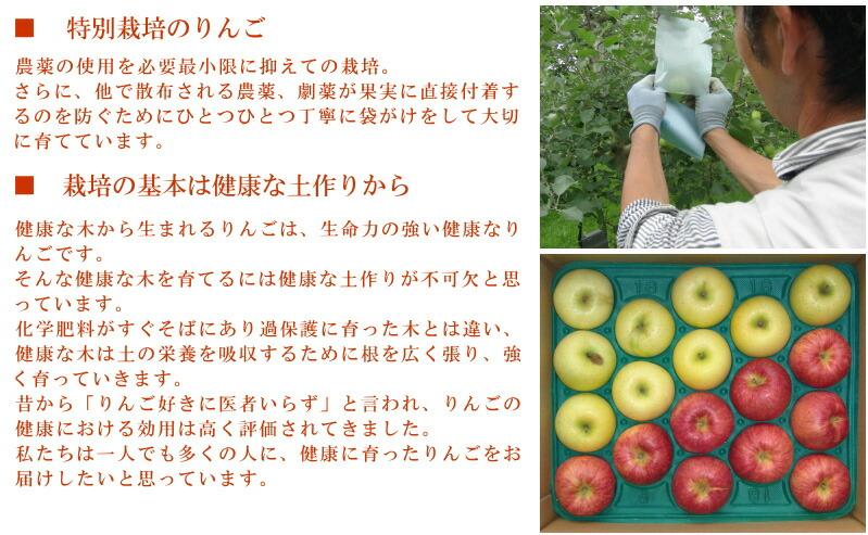 自然農法特別栽培のりんご