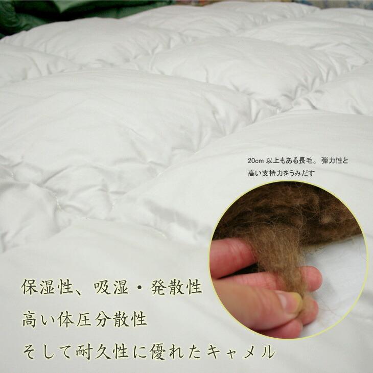 ラクダ毛の特徴