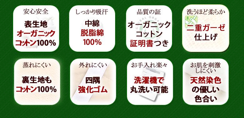 日本限定モデル メッシュウィング