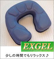 EXGEL