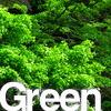 グリーン・緑色