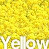 黄色・イエロー