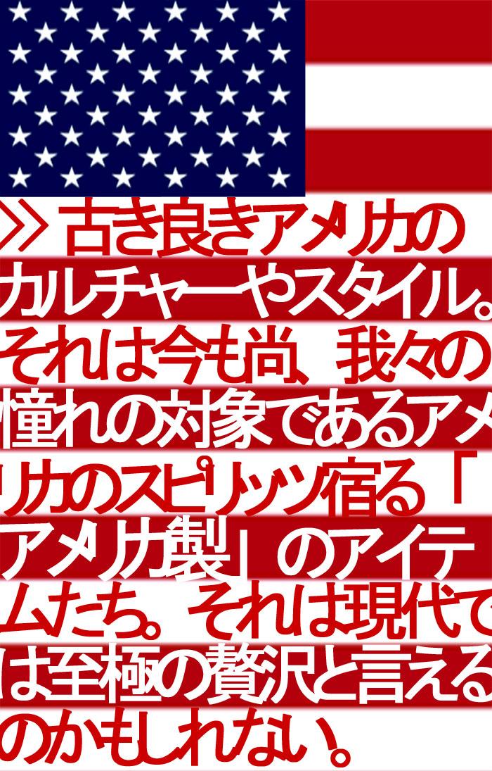 楽天市場 特集検索 メイドインusa アメリカ製特集 フェブ