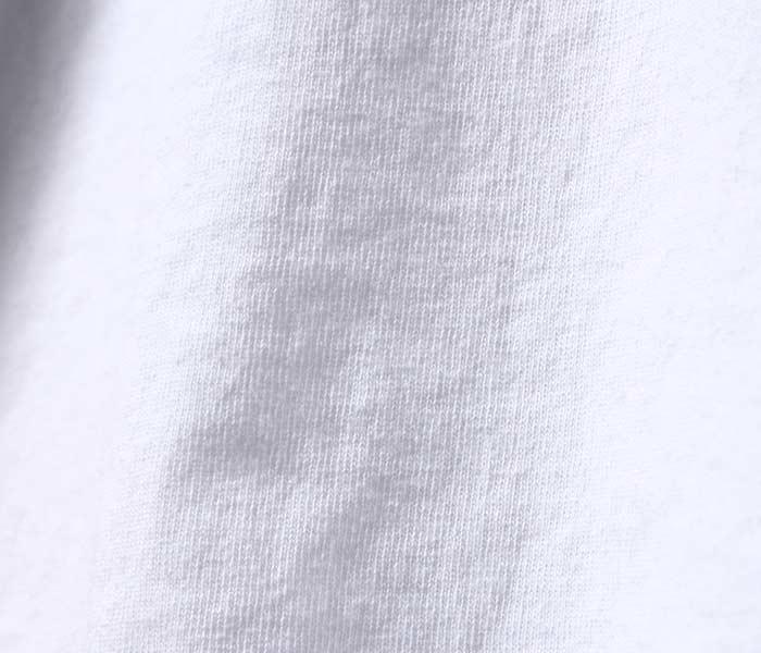 テイスティア/TASTIER × アンドフェブ/and Pheb アメリカ製 別注 ''ビードロ'' プリント ロンT 浮世絵 (TSTR-BIDORO-LONGT)