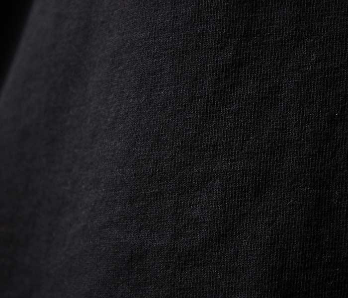 テイスティア/TASTIER × アンドフェブ/and Pheb アメリカ製 別注 ''ビードロ'' プリント ロンT 浮世絵 ベイサイドボディ (TSTR-BIDORO-LONGT)