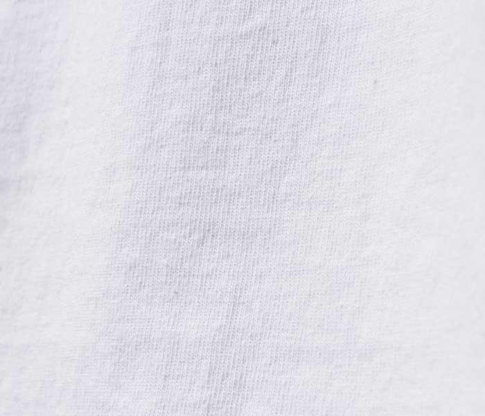 テイスティア TASTIER × アンドフェブ and Pheb アメリカ製 別注 北斎漫画 プリント Tシャツ 葛飾北斎 (TSTR-HOKUSAI-SSTEE)