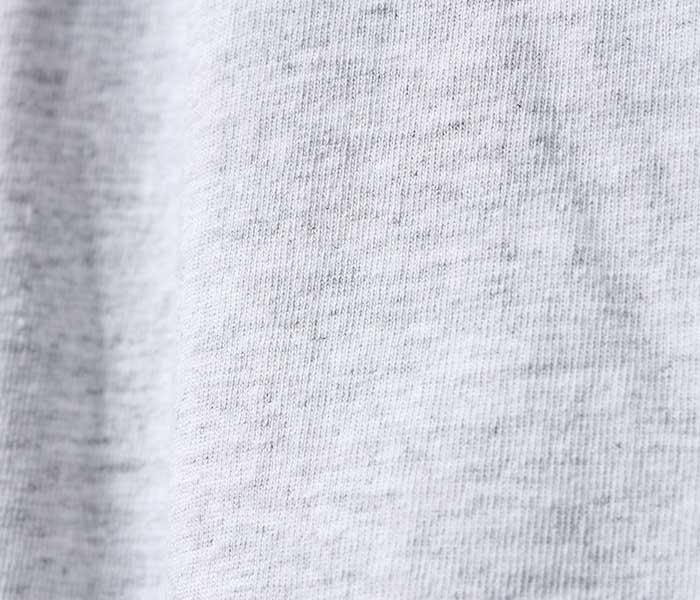 テイスティア TASTIER × アンドフェブ and Pheb アメリカ製 別注 北斎漫画 プリント ロンT ショート丈ボディ 葛飾北斎 (TSTR-HOKUSAI-SHORT-LONGT)