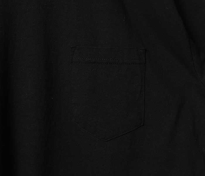 テイスティア TASTIER × アンドフェブ and Pheb アメリカ製 別注 北斎漫画 バックプリント Tシャツ ポケT 葛飾北斎 (TSTR-HOKUSAI-POCKET-TEE)