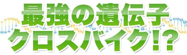 gr333_co_iden2.jpg