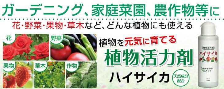 ハイサイカ 植物活力剤 植物活性剤 100ml