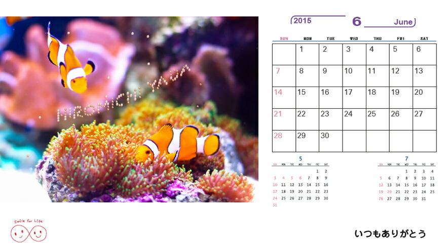 Smile for Life Calendar